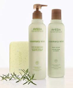 Rosemary mint hand & bodywash