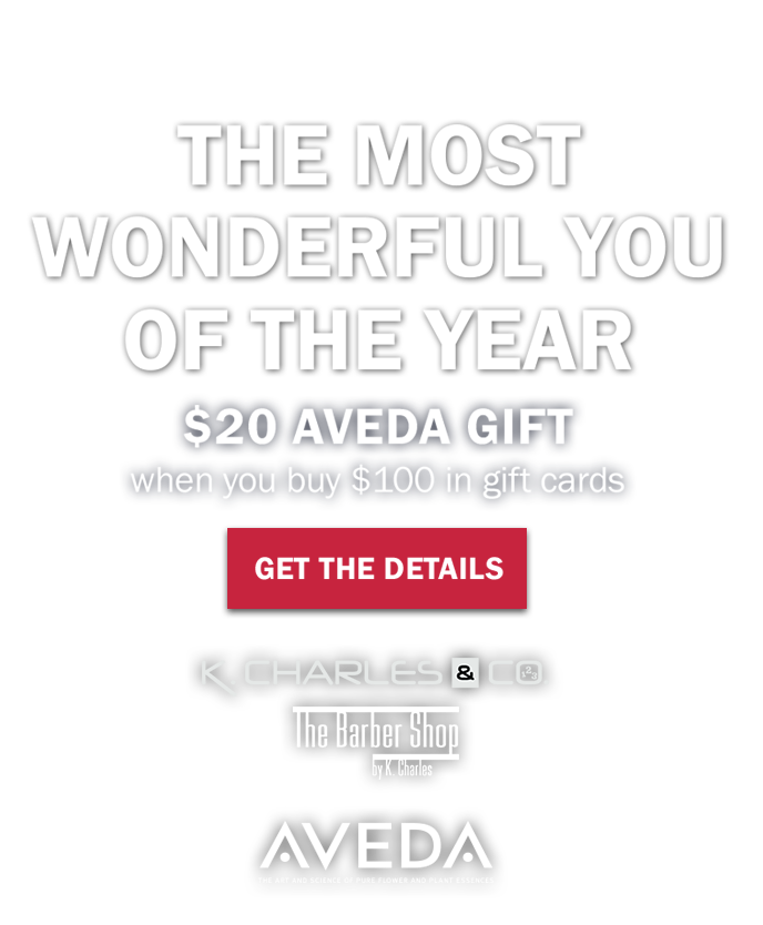 K Charles Co Aveda Salon Spa San Antonio Tx